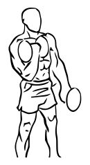 Alternating_bicep_curl_with_dumbbell_1.svg