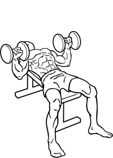 Dumbbell-bench-press-2