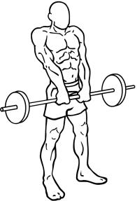 Barbell-shrugs-2