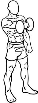 Dumbbell-front-raises-1
