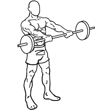 516px-Barbell-front-raises-1