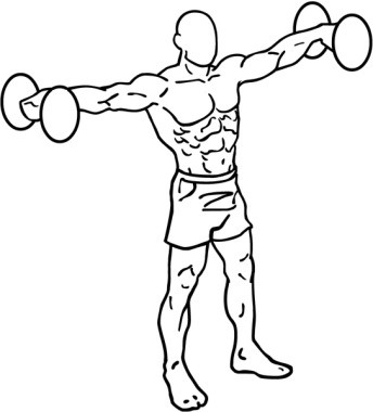 543px-Dumbbell-lateral-raises-1